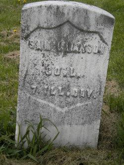 Samuel L Allison