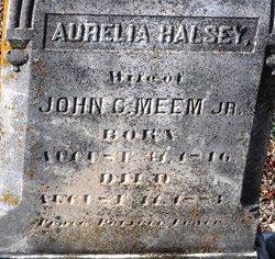 Aurelia <i>Halsey</i> Meem