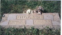 Alpha G Hogan