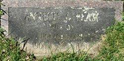Antonetta Agnes Annette <i>Giamatteo</i> Elam