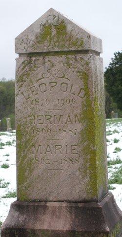 Marie A. Bauerle