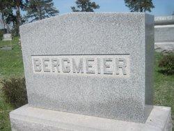 Catherine W Bergmeier