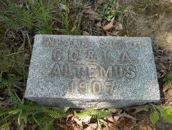 Infant Altemus