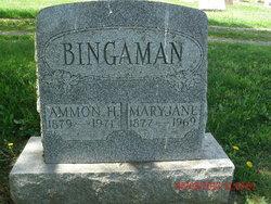 Ammon H Bingaman