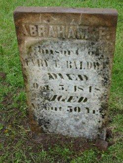Abraham Piatt Baldwin