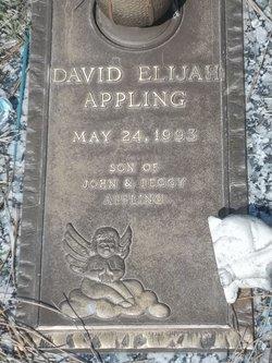 David Elijah Appling