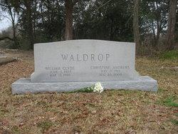 William Clyde Waldrop