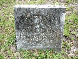 William P. Amerson
