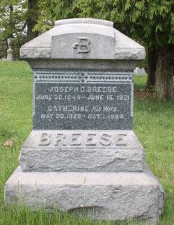 Catherine Breese