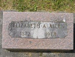 Elizabeth A. Allen