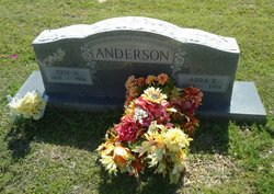 Guy H Anderson