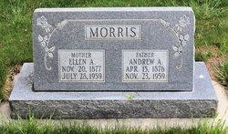 Ellen <i>Adams</i> Morris