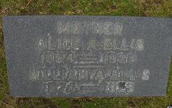 Dr William A. Ellis