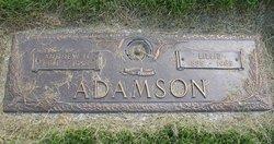 Andrew H Adamson