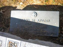 Harry M Adams