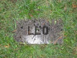 Leo Hammang