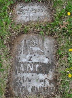 Anna <i>Pangborn</i> Hanchett