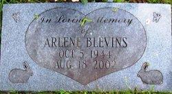 Arlene A Blevins