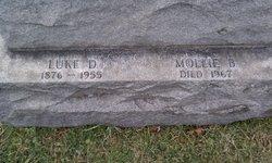 Luke D Mellon