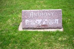 Calvin Harrison Anthony, Jr