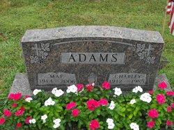 Lilly Mae <i>Shores</i> Adams