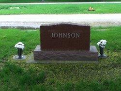 Arnold J Johnson