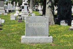 Joseph S Herrmann
