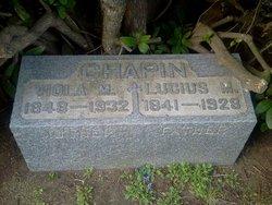 Viola M Chapin