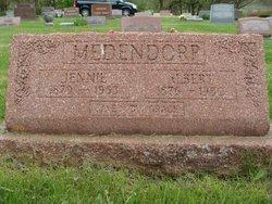 Albert Medendorp