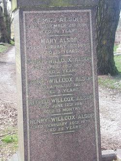 Mary <i>Willcox</i> Alsop