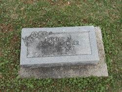 Goldie Marguerite <i>Bruce</i> Archer
