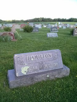 Charles V Hamilton