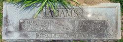 Joshua A Adams