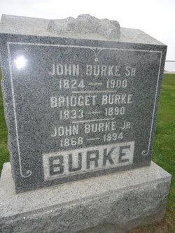 John Burke, Jr