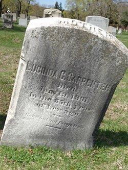 Lucinda <i>Fenner</i> Carpenter