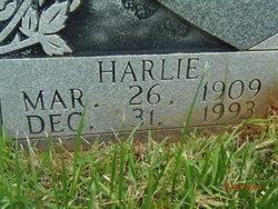 Harlie Derrick