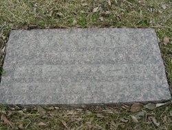 William James Fenton