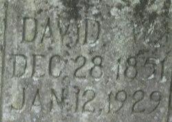 David Watson Metzger