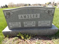 Albert H Amsler