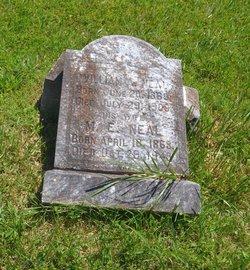 Margaret Eliza <i>Williamson</i> Adams