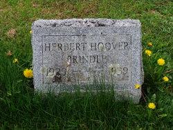 Herbert Hoover Prindle