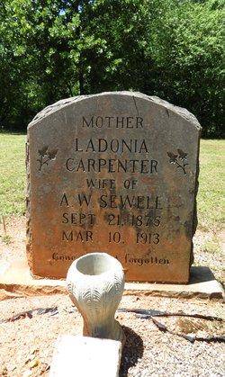 Ladonia <i>Carpenter</i> Sewell