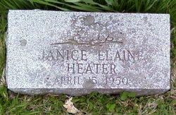 Janice Elaine Heater