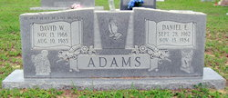Daniel E Adams