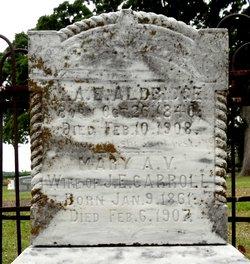 Mary A. V. <i>Aldridge</i> Carroll