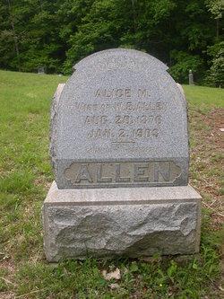 Alice Maude <i>Evans</i> Allen
