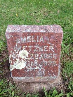 Amelia L Metzner