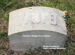 Vernum J. Briggs