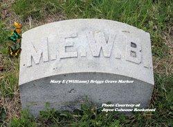 Mary E. <i>Williams</i> Briggs