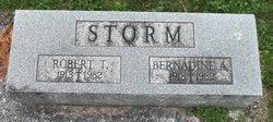 Robert Titus Storm